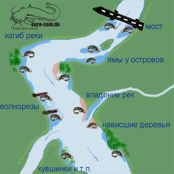карта ям на москва реке
