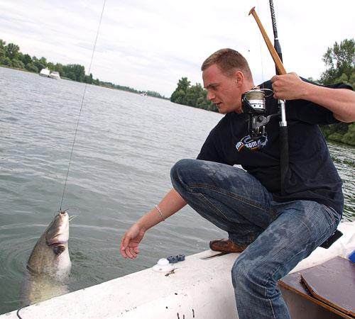 Ловля сома в Рейне