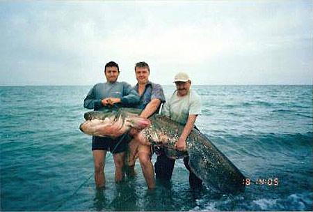 Сом весом 114 кг. Озере Капчагай