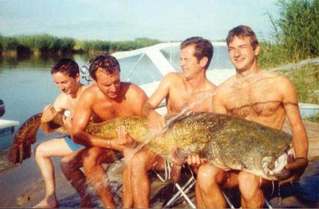 Сом длиной 272 96 килограмм.